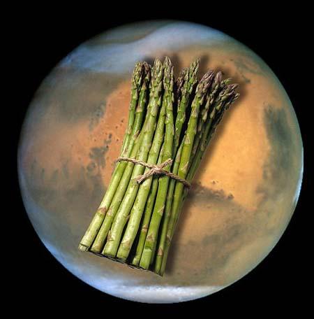 火星はアスパラガスがよく育つ