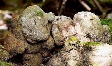 ルーマニアにある生きている石
