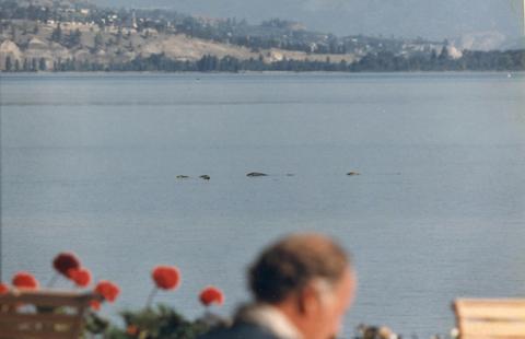 """カナダのオカナガン湖でUMA""""オゴポゴ""""の死体発見?"""